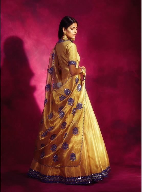 Gold Tissue Applique Anarkali Set